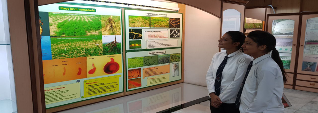 Industrial Visit To Indian Institute Of Pulses Research (IIPR), Kanpur