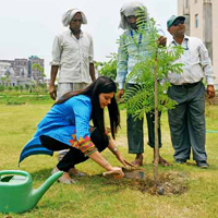Environment Day At RMC  HAPUR